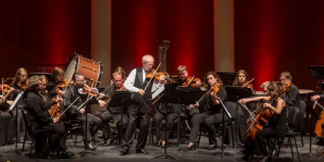 Imagen de Una orquesta de cámara de sonido excepcional.