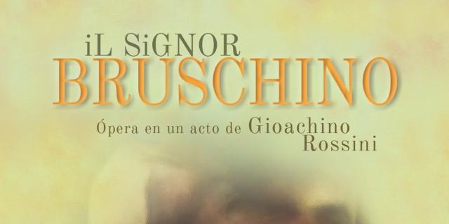 Imagen de El Señor Bruschino