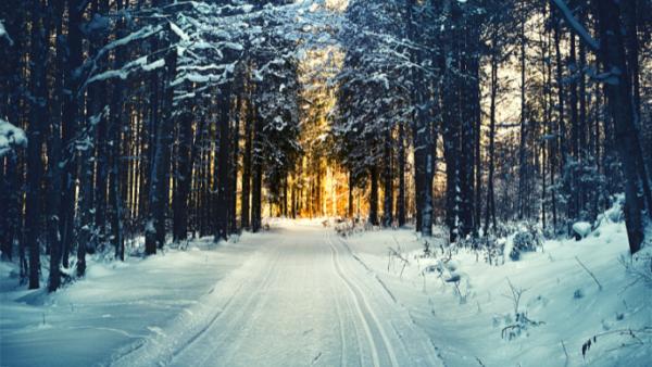Seis obras inspiradas en el invierno